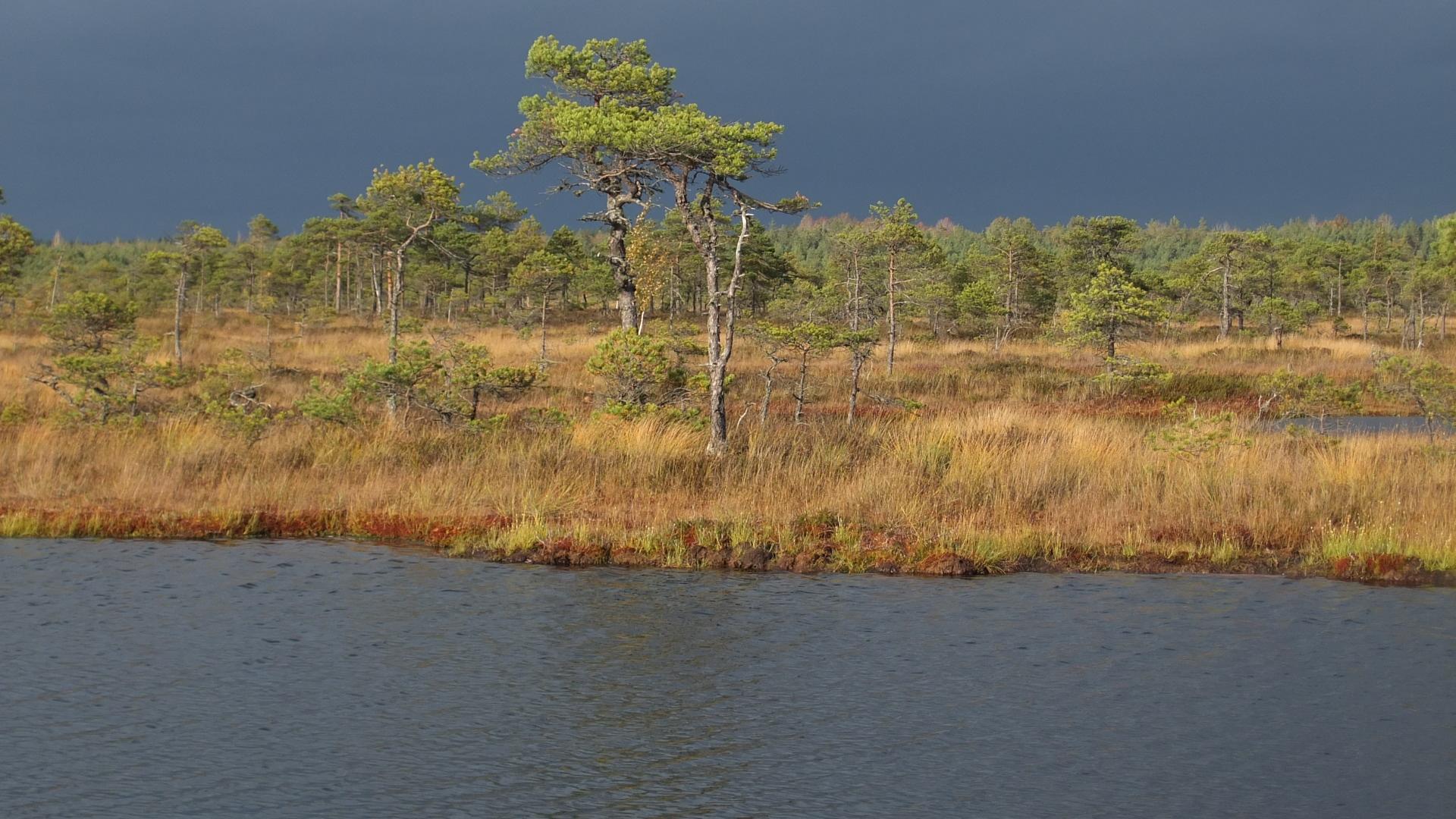 Tuule Kanni fotod raba oktoobris (2)